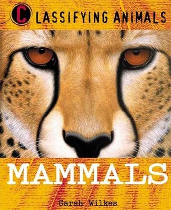 Classifying Animals: Mammals