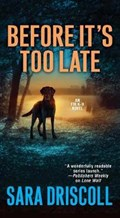 Before It's Too Late | Sara Driscoll |
