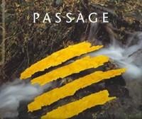 Passage | Andy Goldsworthy |
