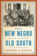 The New Negro in the Old South | Gabriel A. Briggs |