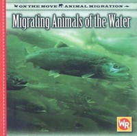 Migrating Animals of the Water | Susan Labella |
