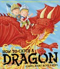 How To Catch a Dragon | Caryl Hart |