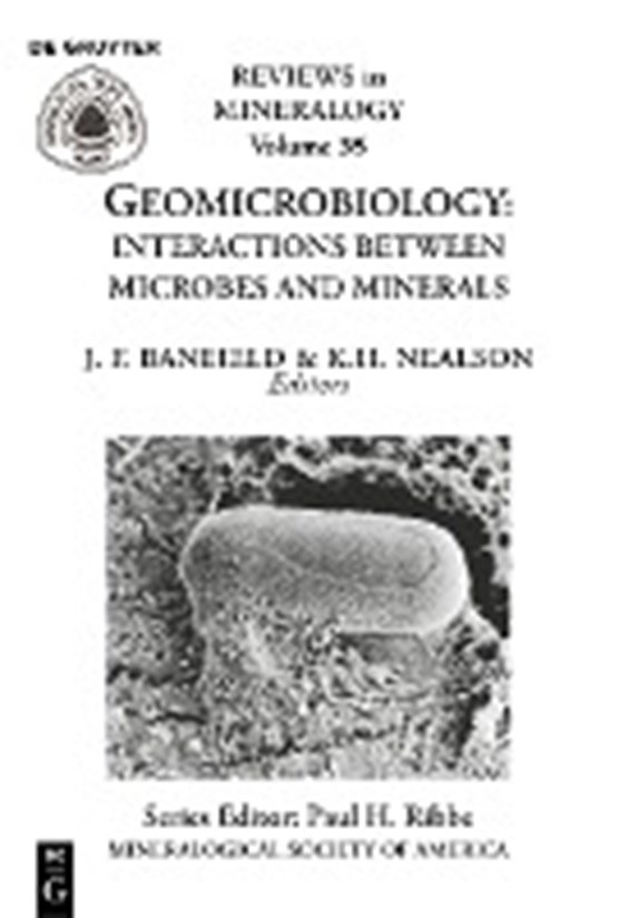 Geomicrobiology