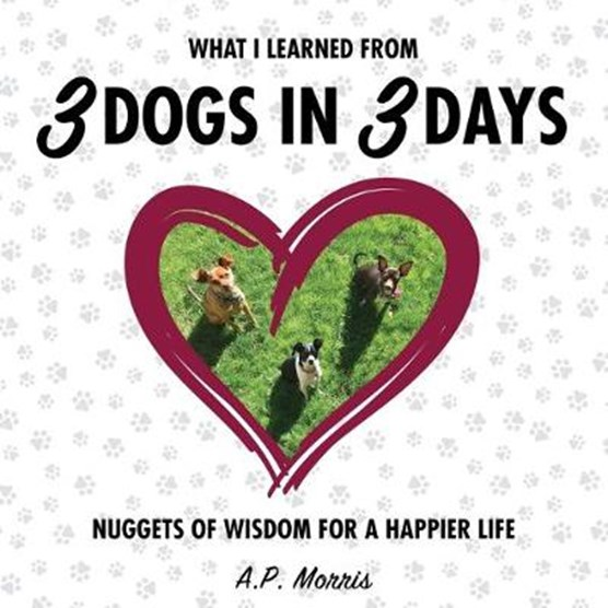 What I Learned from 3 Dogs in 3 Days