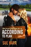 According to Plan | Sue Barr |