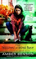 The Witches of Echo Park   Amber Benson  