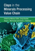 Clays in the Minerals Processing Value Chain | Grafe, Markus ; Klauber, Craig (curtin University of Technology, Perth) ; McFarlane, Angus J. (commonwealth Scientific and Industrial Research Organisation, Canberra) |