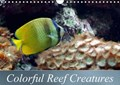 Colorful Reef Creatures | Bianca Schumann |