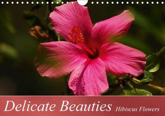 Delicate Beauties Hibiscus Flowers