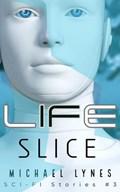 Life Slice   Michael Lynes  