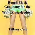Rough Black Gangbang for the White Cheerleader 1 | Tiffany Cole |