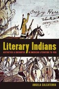 Literary Indians   Angela Calcaterra  