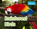 Rainforest Birds | Elizabeth Nonweiler |