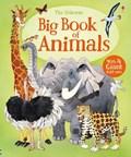 Big Book of Animals | Hazel Maskell |
