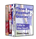 Three Hot Football Stories: Life in the SexFL | Dawn South |