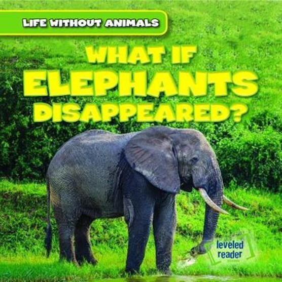What If Elephants Disappeared?