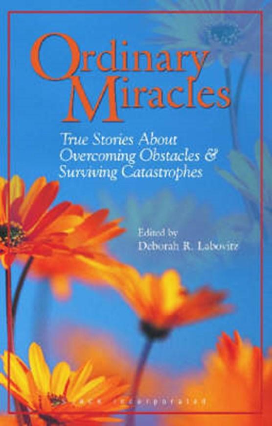 Labovitz, D: Ordinary Miracles