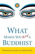 What Makes You Not a Buddhist   Dzongsar Jamyang Khyentse  