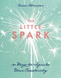 The Little Spark   Carrie Bloomston  