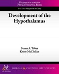 Development of the Hypothalamus | Tobet, Stuart A. ; McClellan, Kristy |