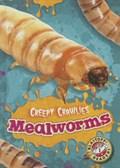 Mealworms | Kari Schuetz |