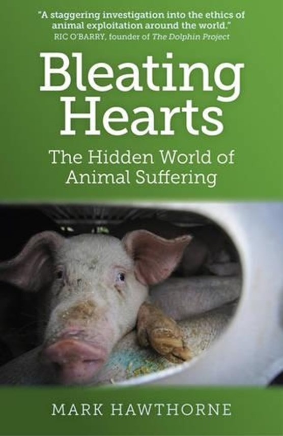 Bleating Hearts