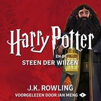 Harry Potter en Steen der Wijzen | J.K. Rowling |
