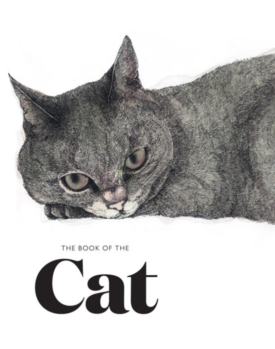 Book of the cat: cats in art
