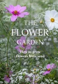 Flower Garden   Clare Foster  