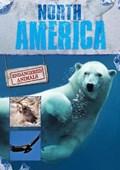 North America | Grace Jones |