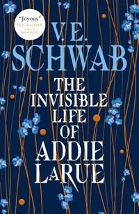 The invisible life of addie larue | Schwab V E |