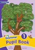 Grammar 1 Pupil Book   Wernham, Sara ; Lloyd, Sue  