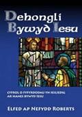 Dehongli Bywyd Iesu | Elfed ap Nefydd Roberts |