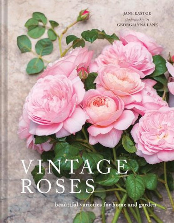 Vintage roses : beautiful varieties for home and garden