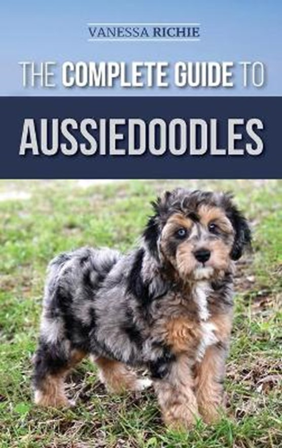 The Complete Guide to Aussiedoodles