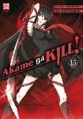 Akame ga KILL! 15   Tetsuya Takahiro ; Tashiro  