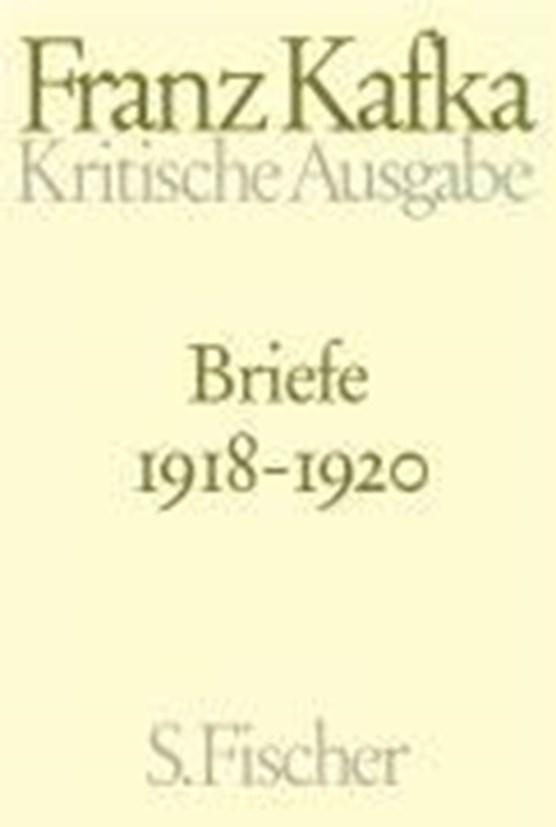 Briefe 4. 1918 - 1920
