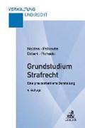 Grundstudium Strafrecht   Nolden, Waltraud ; Palkovits, Frank ; Dittert, Susanne ; Pichocki, Frank  