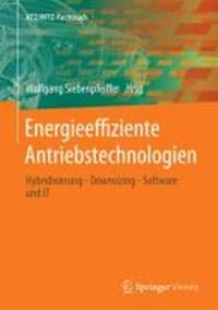 Energieeffiziente Antriebstechnologien | Wolfgang Siebenpfeiffer |