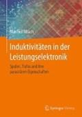 Induktivitaten in der Leistungselektronik | Manfred Albach |