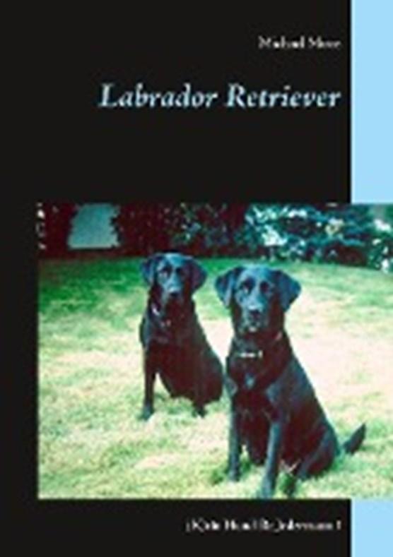 Moos, M: Labrador Retriever