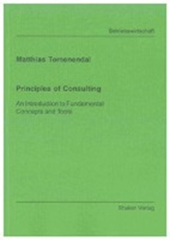 Principles of Consulting