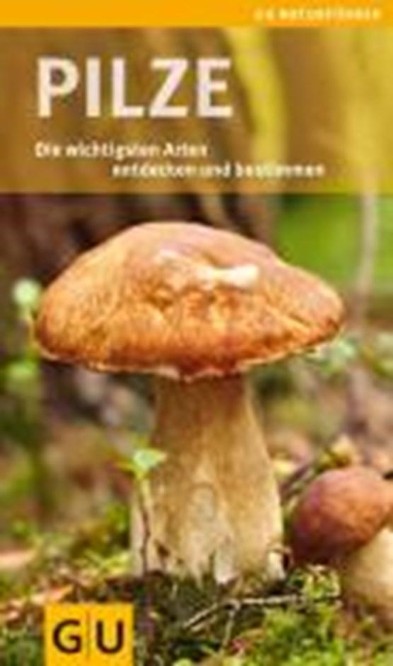 Lang, A: Pilze
