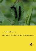 Die Raupen der Gross-Schmetterlinge Europas   Ernst Hofmann  