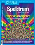 Spektrum Spezial - Faszination Algebra | auteur onbekend |
