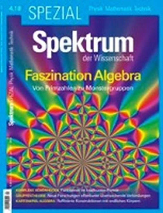 Spektrum Spezial - Faszination Algebra