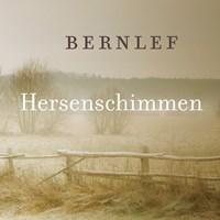 Hersenschimmen | Bernlef |