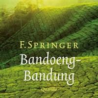 Bandoeng-Bandung | F. Springer |