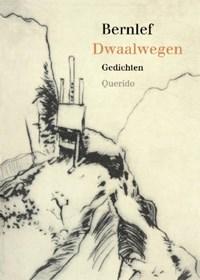 Dwaalwegen | J. Bernlef |
