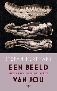 Een beeld van jou   Stefan Hertmans  